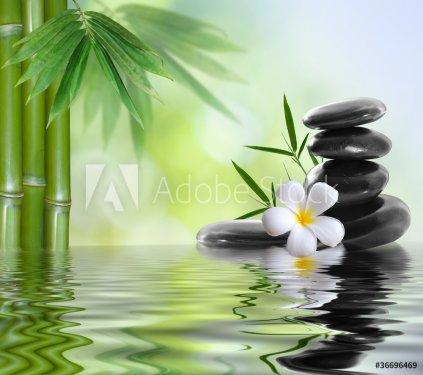 spa stones with frangipani