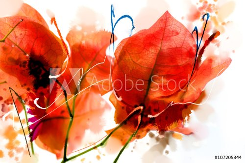 painted pink and orange bougainvillea flowers watercolor style series.