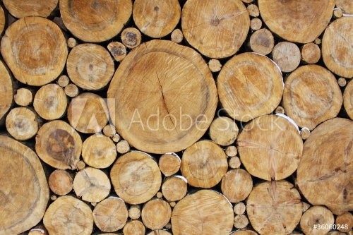 Stacked Logs, natural background image