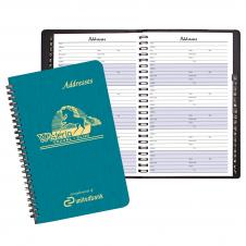 Large Address Book/ Shimmer Cover