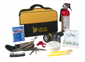 Premium Home Safety Kit