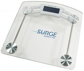 Personal health scale #RushExpress72hrs