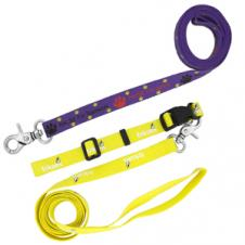3/8 Dog Leash (4-5 Week Service)
