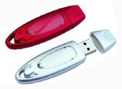 Custom Plastic Ellipse Oval USB Flash Drive W/ Flat Head Cap
