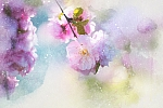 Art Watercolor