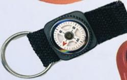 Compass Strap