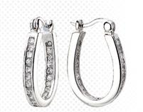 Cubic Zirconia Hoop Oval Earrings w/ Hinged Enclosure