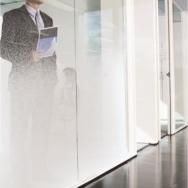 Film pour vitres - Films décoratifs - Films blancs - INT 110 - Blanc diffusé
